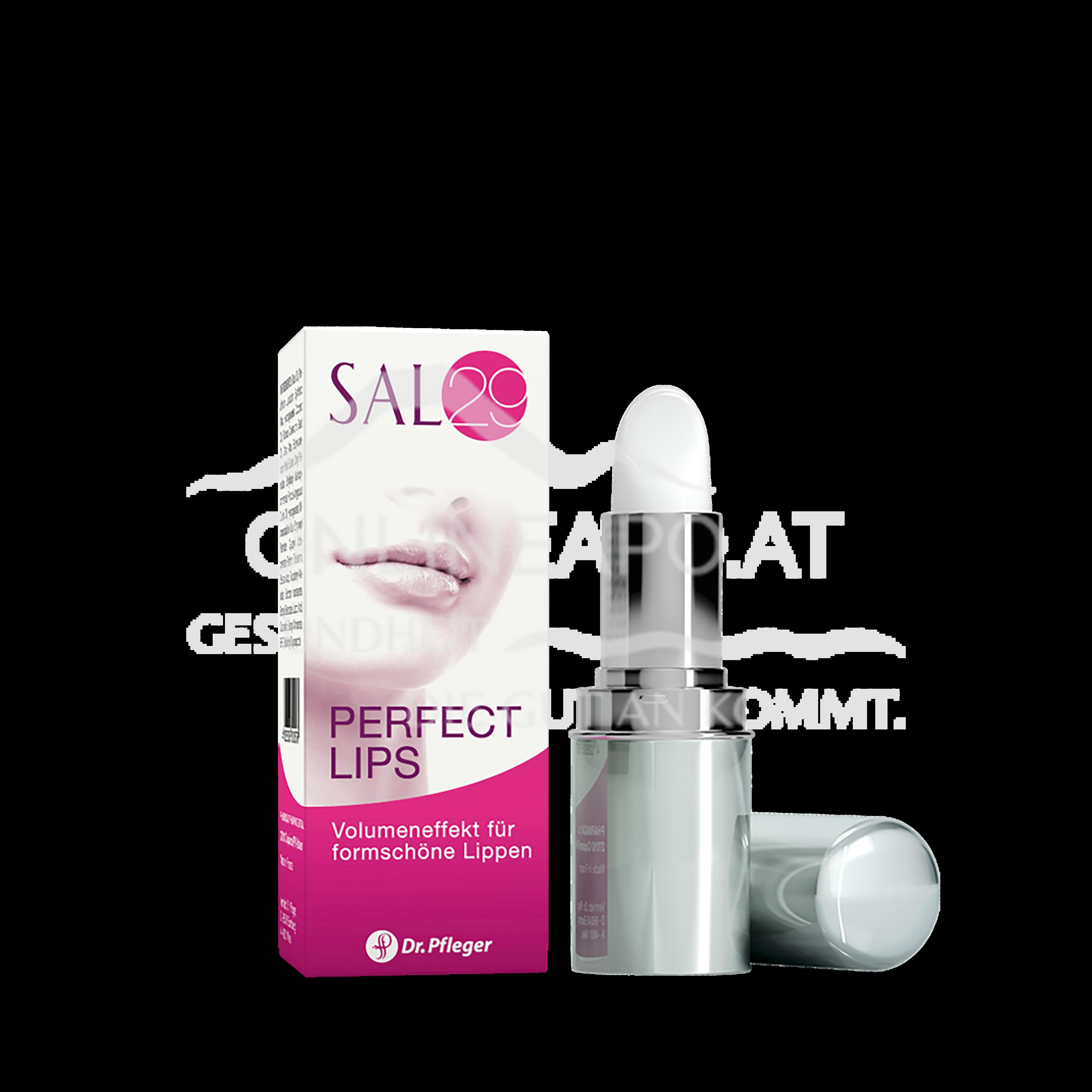 SAL 29 Perfect Lips
