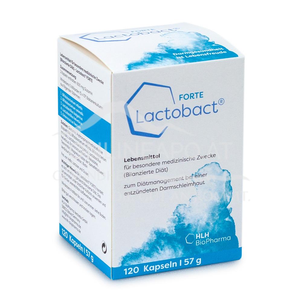Lactobact FORTE