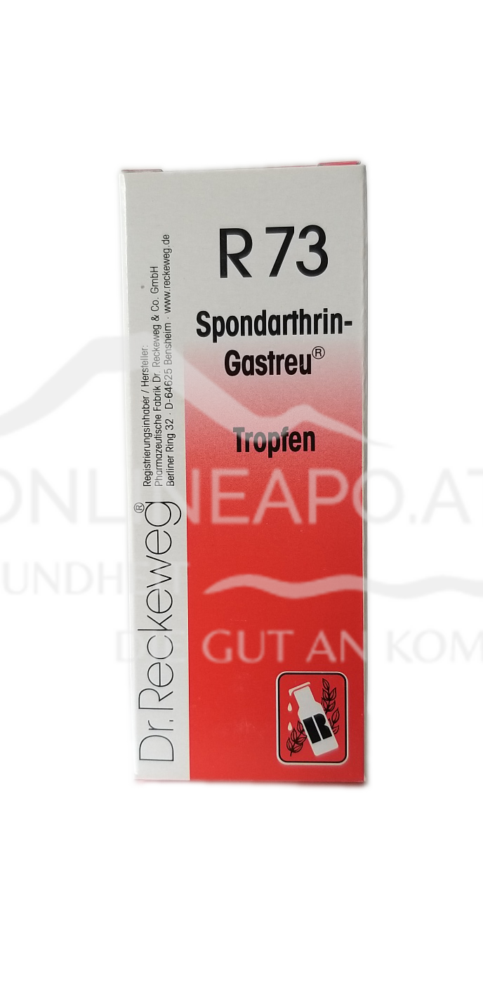 Dr. Reckeweg® Spondarthrin-Gastreu® R73