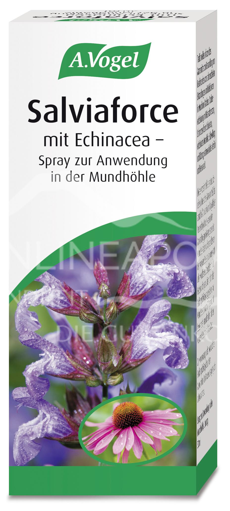 A.Vogel Salviaforce mit Echinacea Spray zur Anwendung in der Mundhöhle